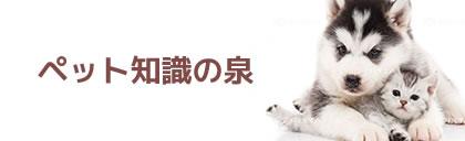 ペット知識の泉